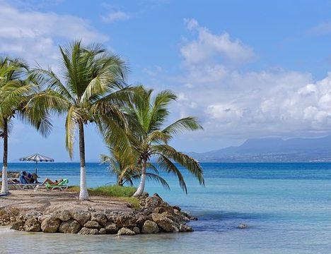Les bonnes raisons de partir en vacances en croisière
